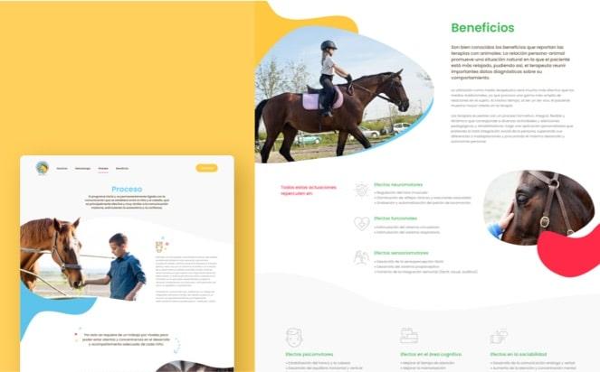 portfolio-equussanare-2